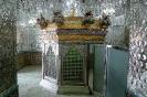 حرم شاه شهرری