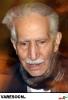 شاهرخی-محمود