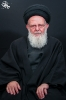 حضرت آیت الله حسینی زنجانی
