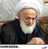 محامدی-محمدجواد