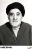 فیض الاسلام-علی نقی
