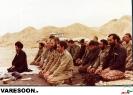 حضرت آیت الله سید جواد علم الهدی