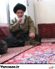 شیرازی-حسن