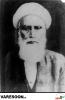شیرازی-علی