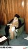 حضرت آیت الله سید محمد روحانی