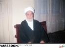 رضوی سلدوزی-محمدامین