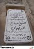 دجیلی نجفی-صالح