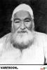 میرزا محمدتقی بافقی