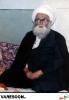 نمازی شاهرودی-علی